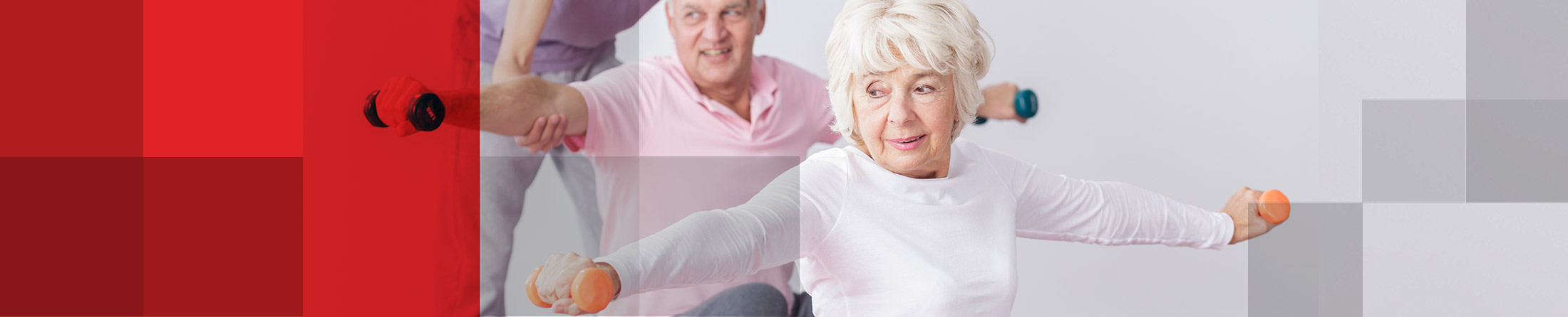 Continence, Wound, Nutrition, Pharmaceutical and Medical Wholesaler